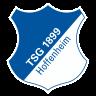 Escudo del equipo '1899 Hoffenheim'
