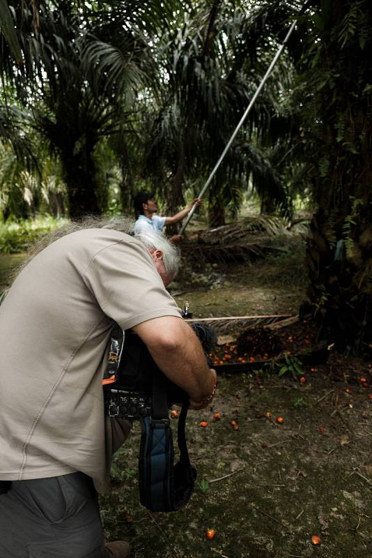 Rodaje en una plantación de palma cercana a Parenggean