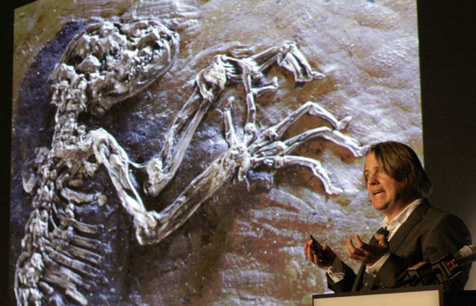 "47 million year old fossilized primate specimen known as "" Ida"" unveiled at New York's Museum of Natural History"