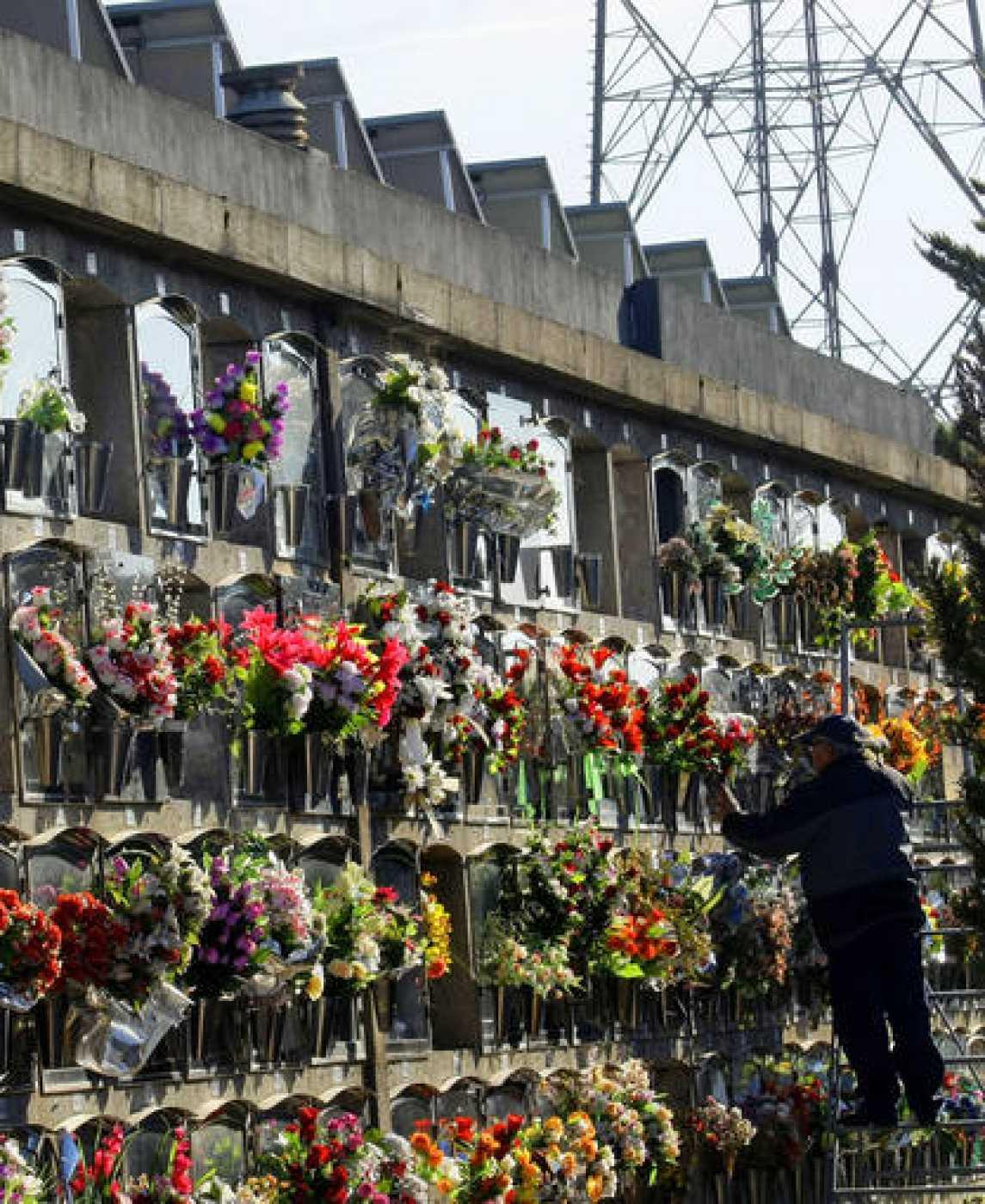 A man arranges flowers in a cemetery with solar panels in Santa Caloma de Gramenet near Barcelona