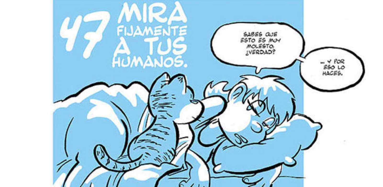 Página de 'Guía gatuna', de José Fonollosa