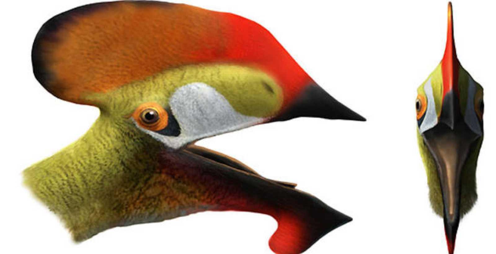 Representación del nuevo reptil volador localizado durante la investigación en el yacimiento de Las Hoyas (Cuenca)