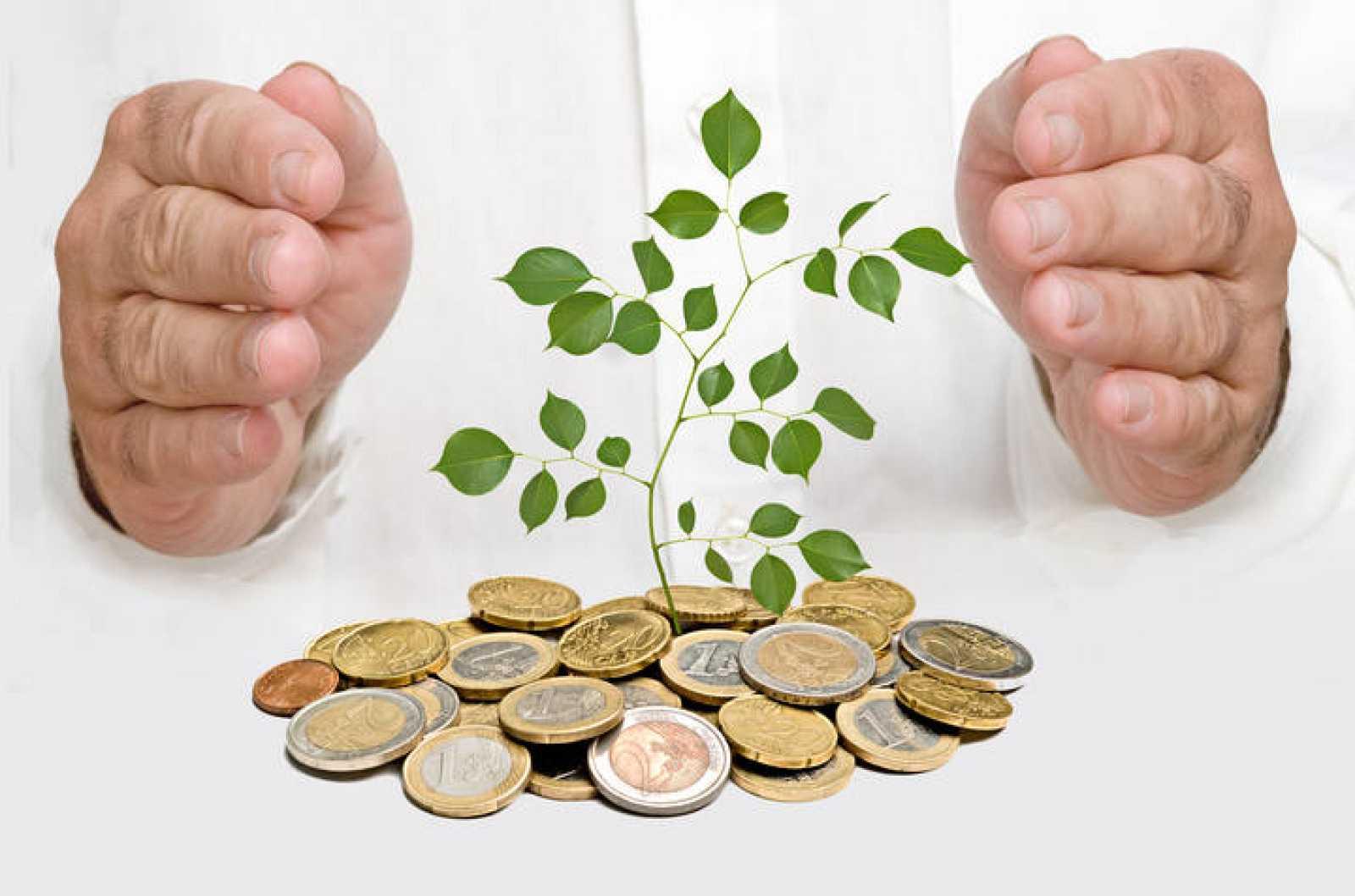 Manos cubirendo un árbol que nace de una pila de dinero.