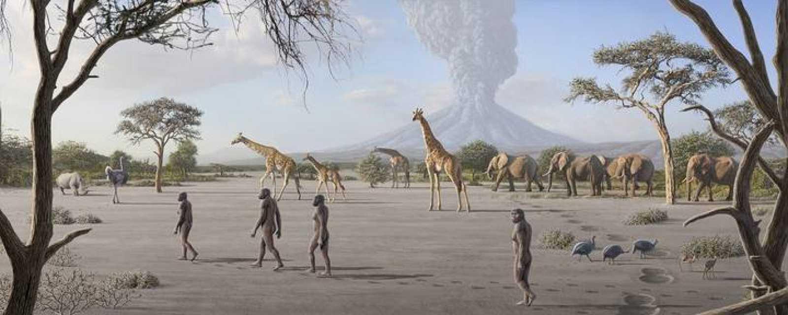 Recreación del momento en el que se producen las pisadas de Laetoli hace más de 3 millones de años.