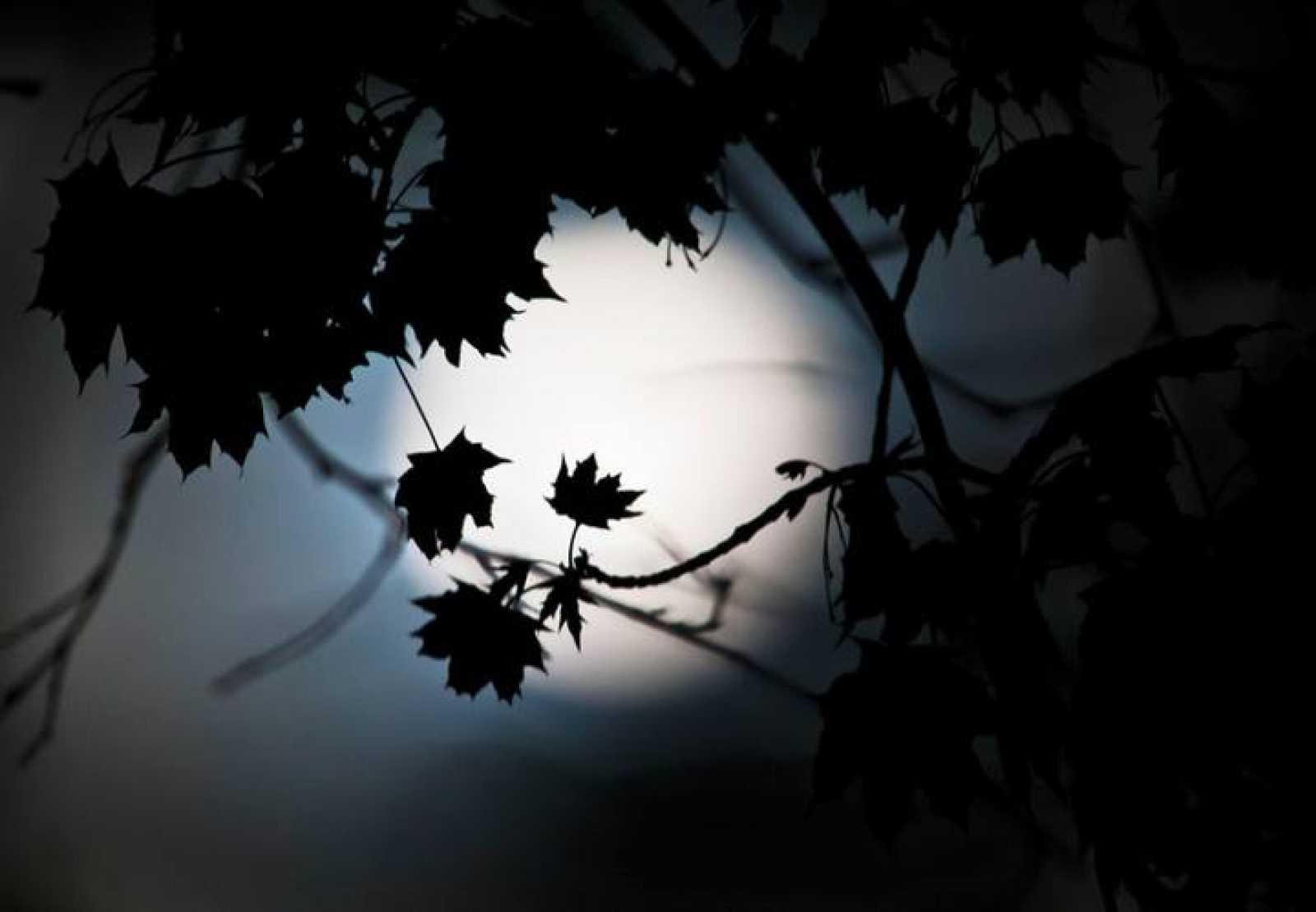 En la primavera de 2014, se podrá ver un eclipse total de luna en España el 15 de abril.