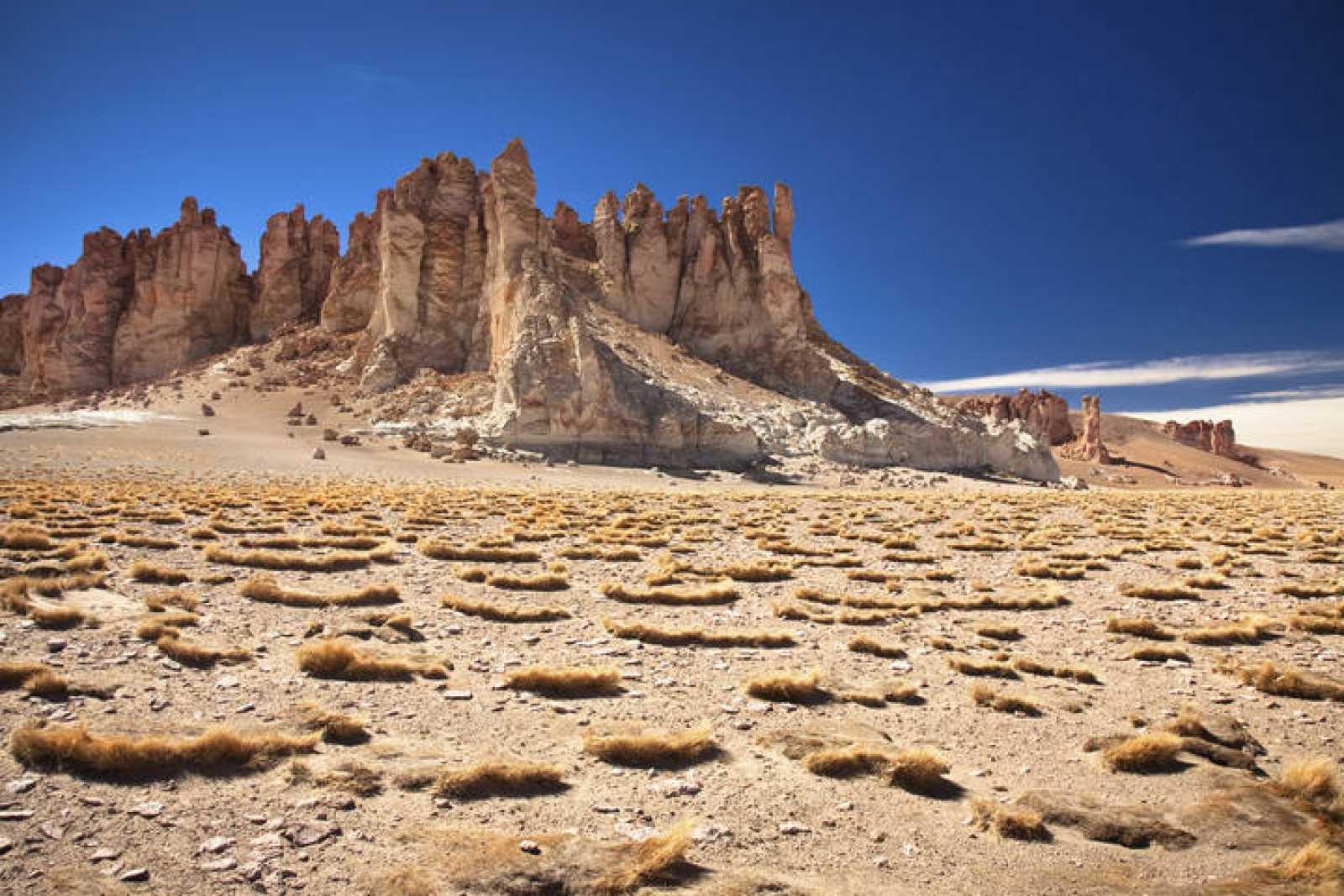 Salar en el desierto de Atacama en Chile