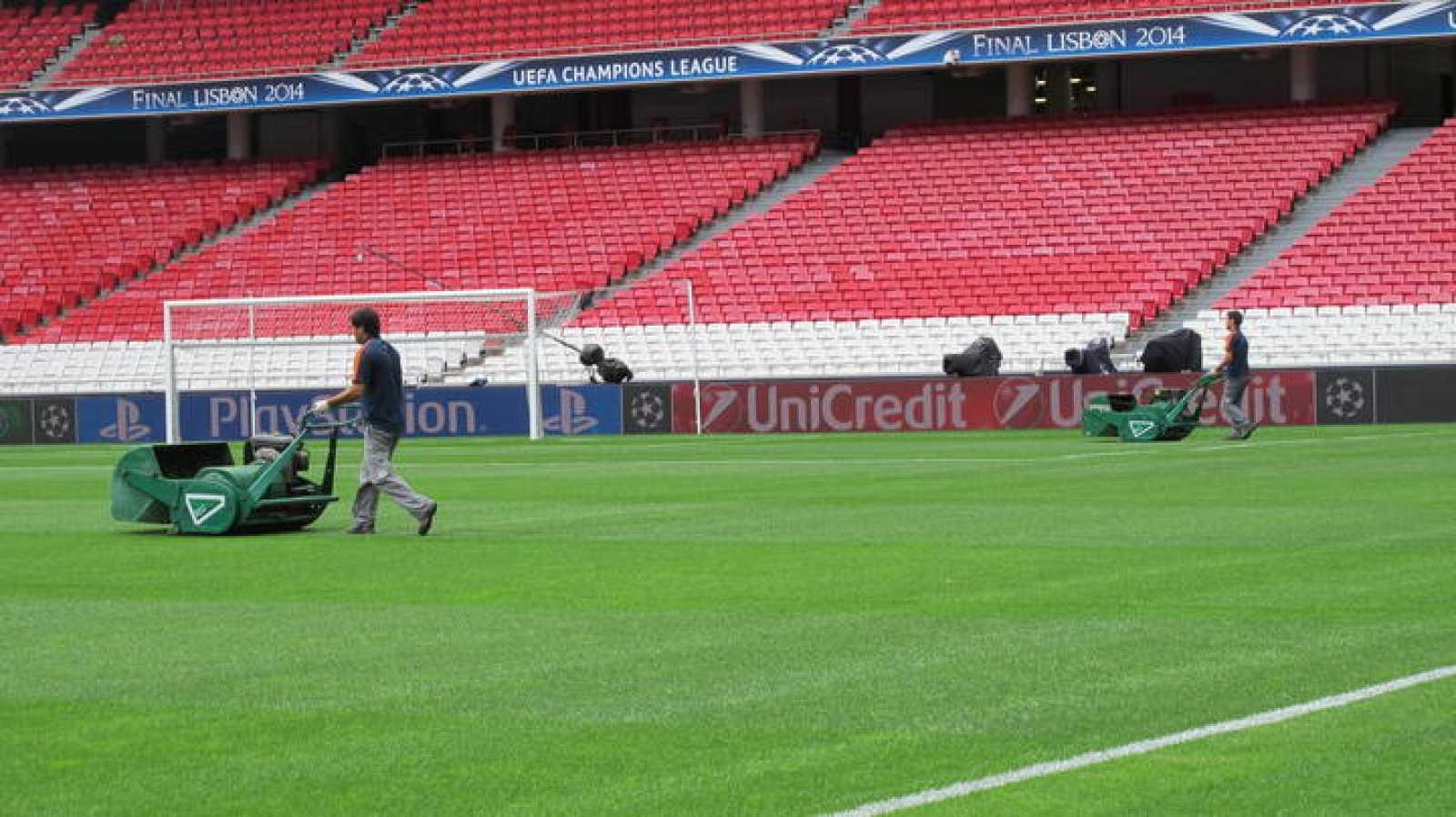 Dos operarios trabajan sobre el césped del Estádio da Luz.