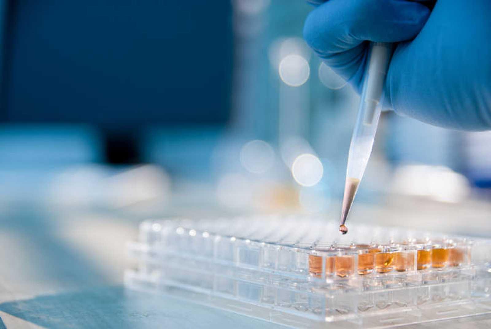 La Asamblea General de Ciencia alerta del descenso del presupuesto para investigación