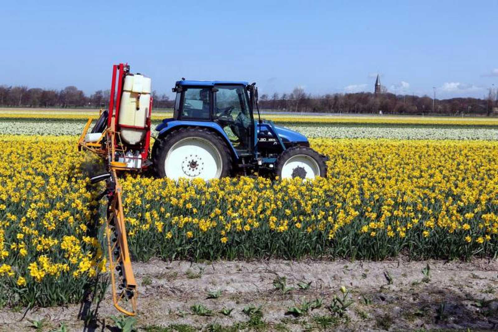 Un tractor fumigando con insecticida un campo.