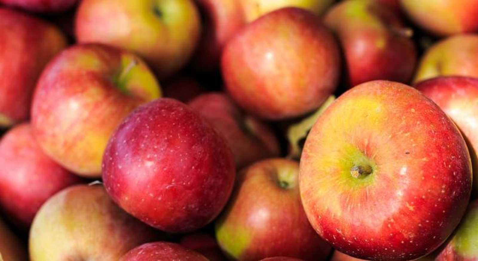 Moléculas presentes en la manzana pueden contribuir a reducir la grasa corporal.
