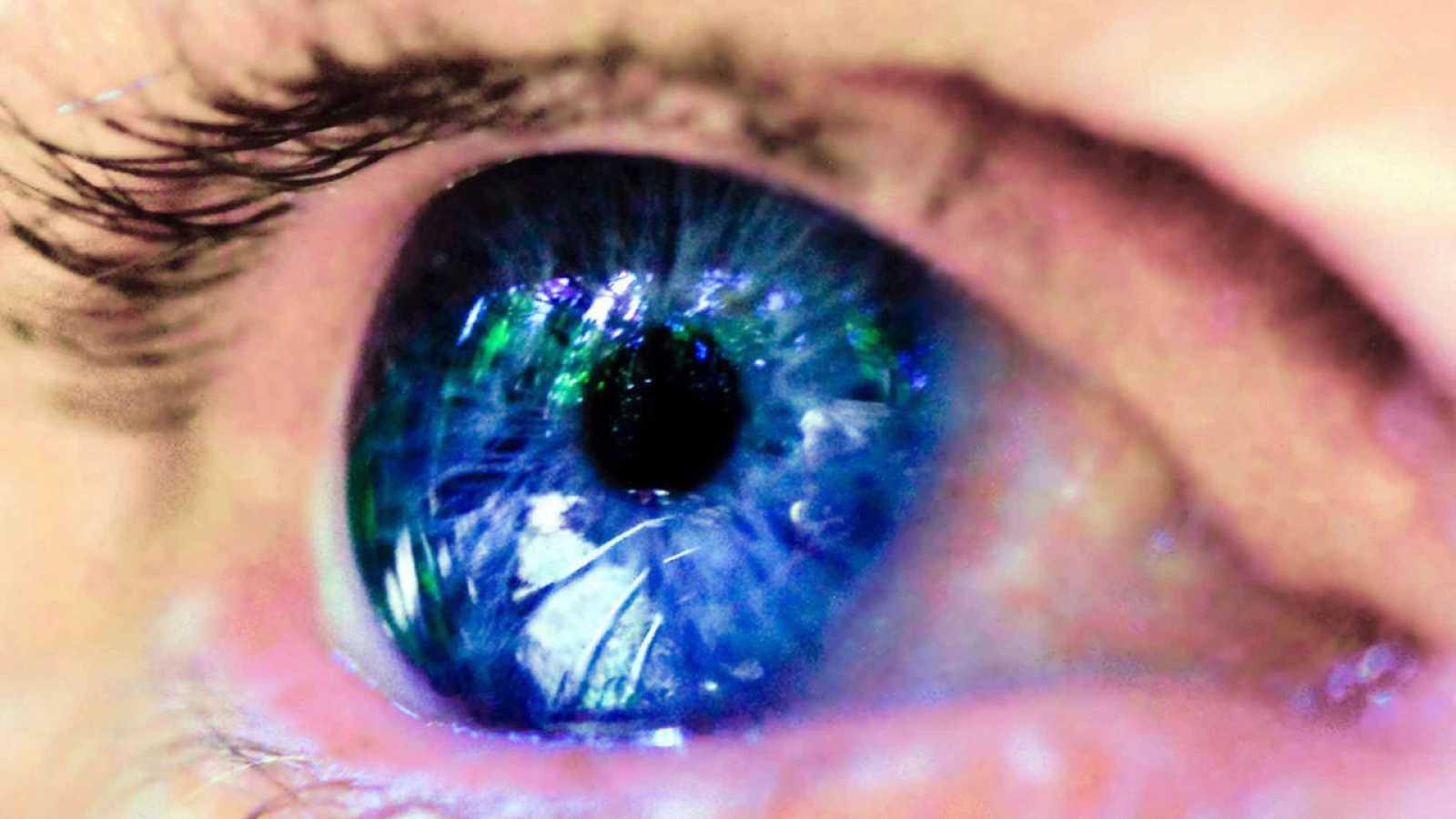 Esta técnica, conocida como 'ventana al cerebro', permite de modo no invasivo observar el engrosamiento o adelgazamiento de las fibras de la retina y del nervio óptico, que constituyen un fiel reflejo del estado del sistema nervioso central en el cer