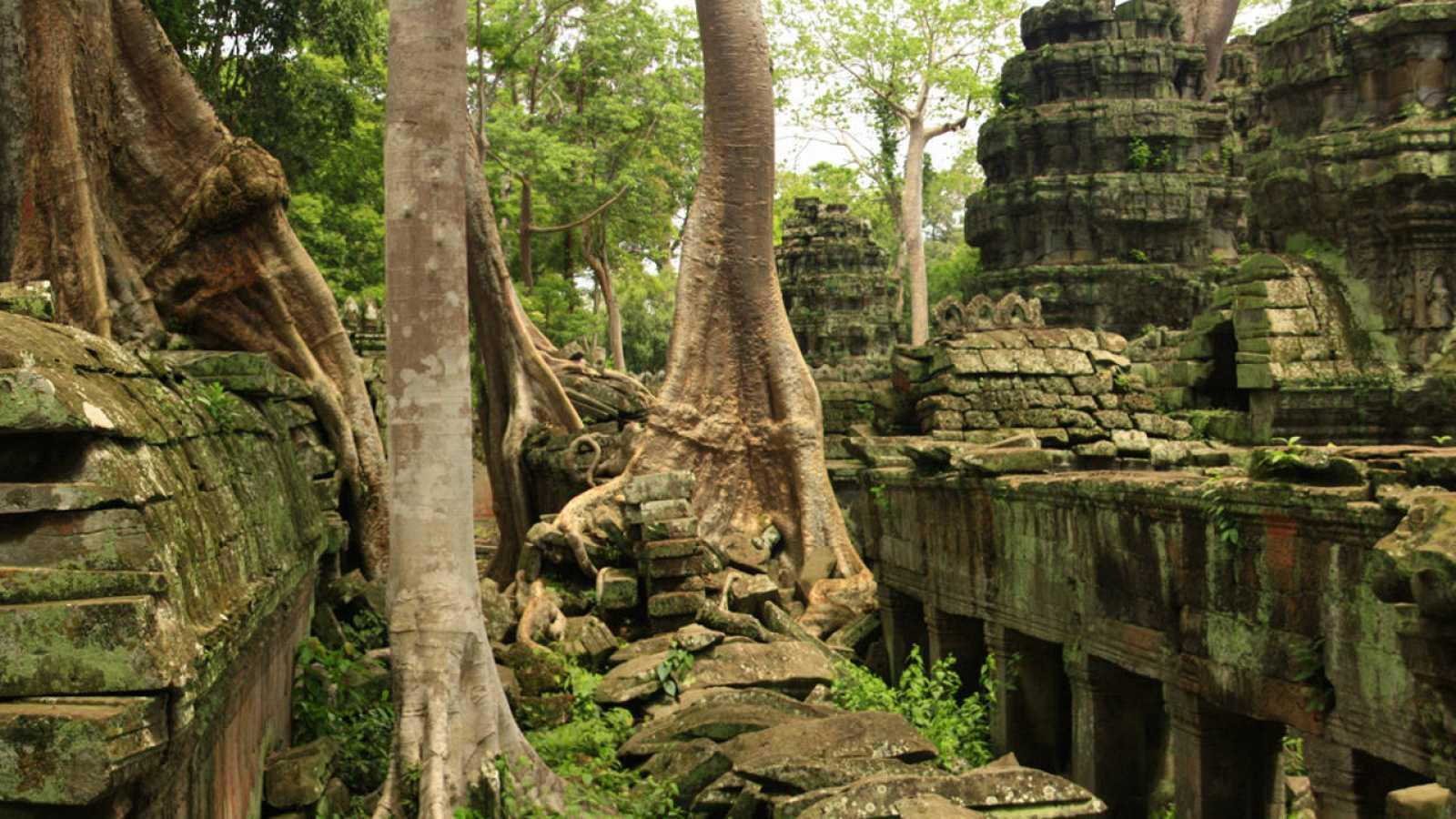 Imagen del templo jemer de Ta Prohm, en Camboya.