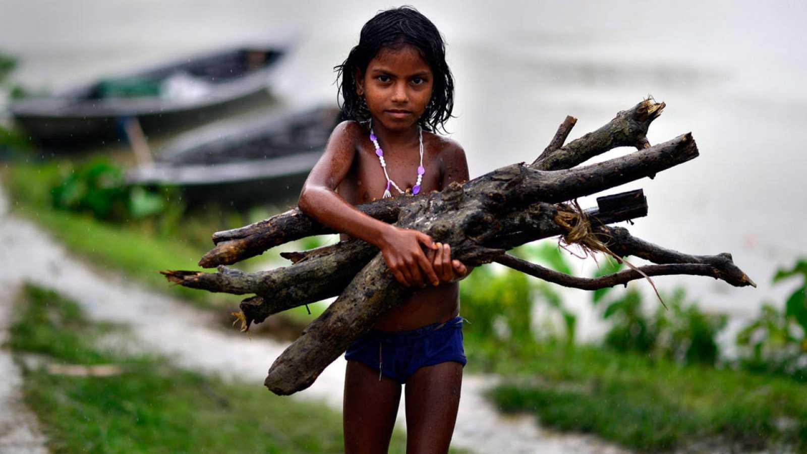 Una niña india recoge leña