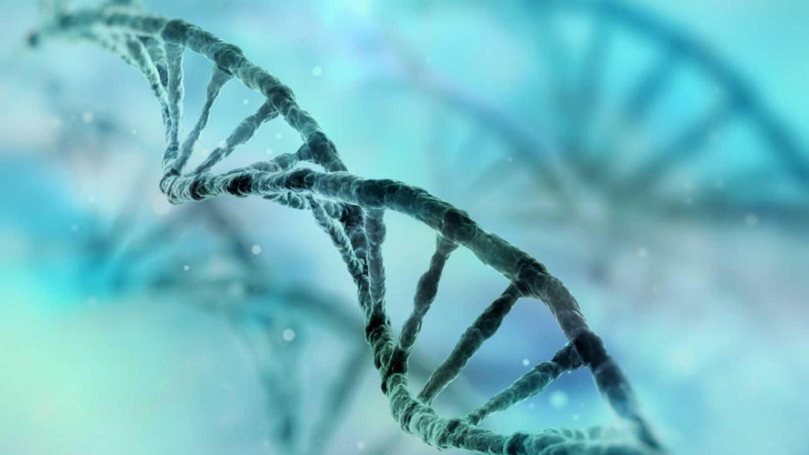 Describen un mapa con las mutaciones genéticas y su frecuencia en la ...