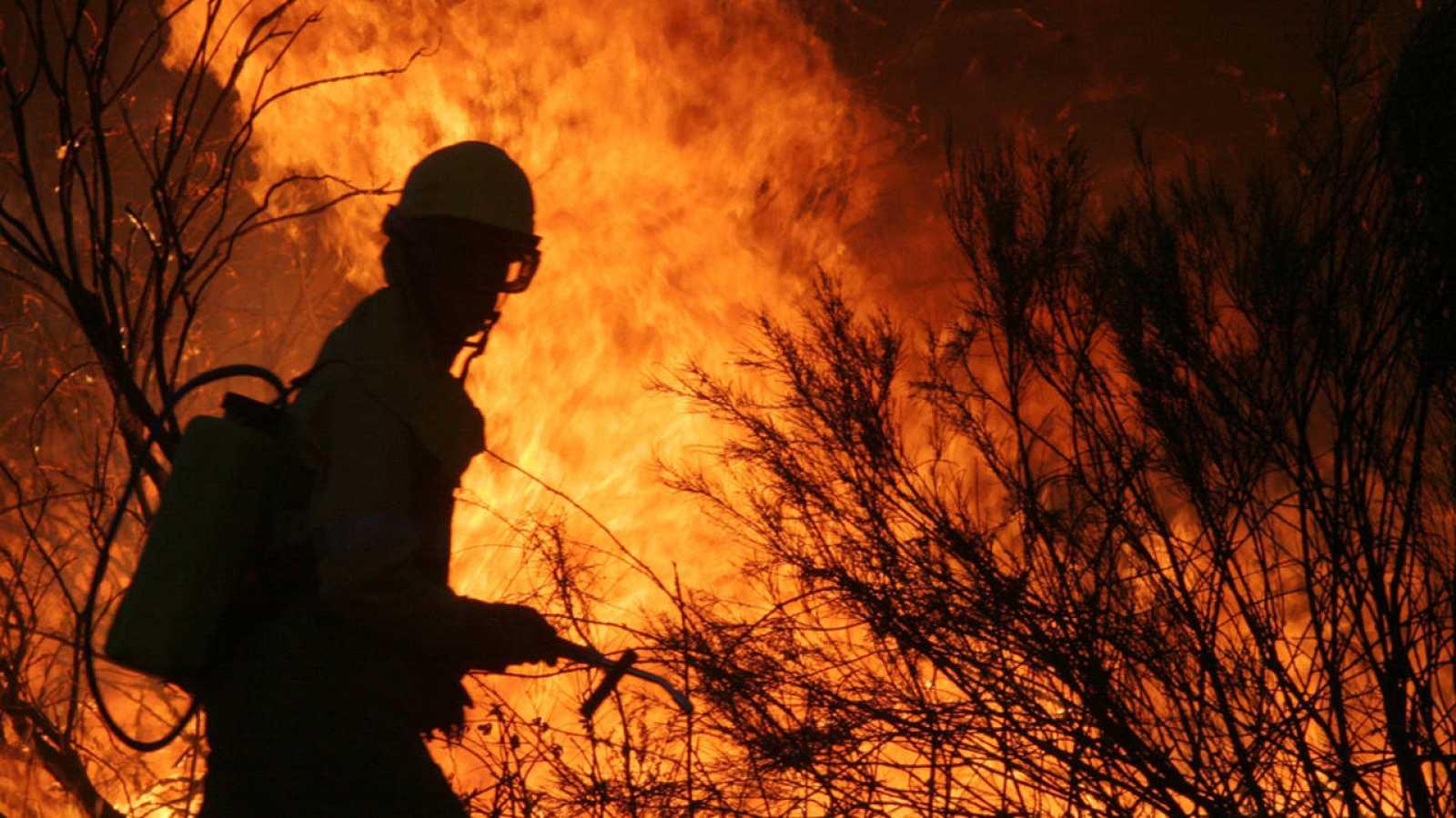 Toda clase de incendios, grandes y pequeños, son capaces de inducir hidrofobicidad en el suelo.