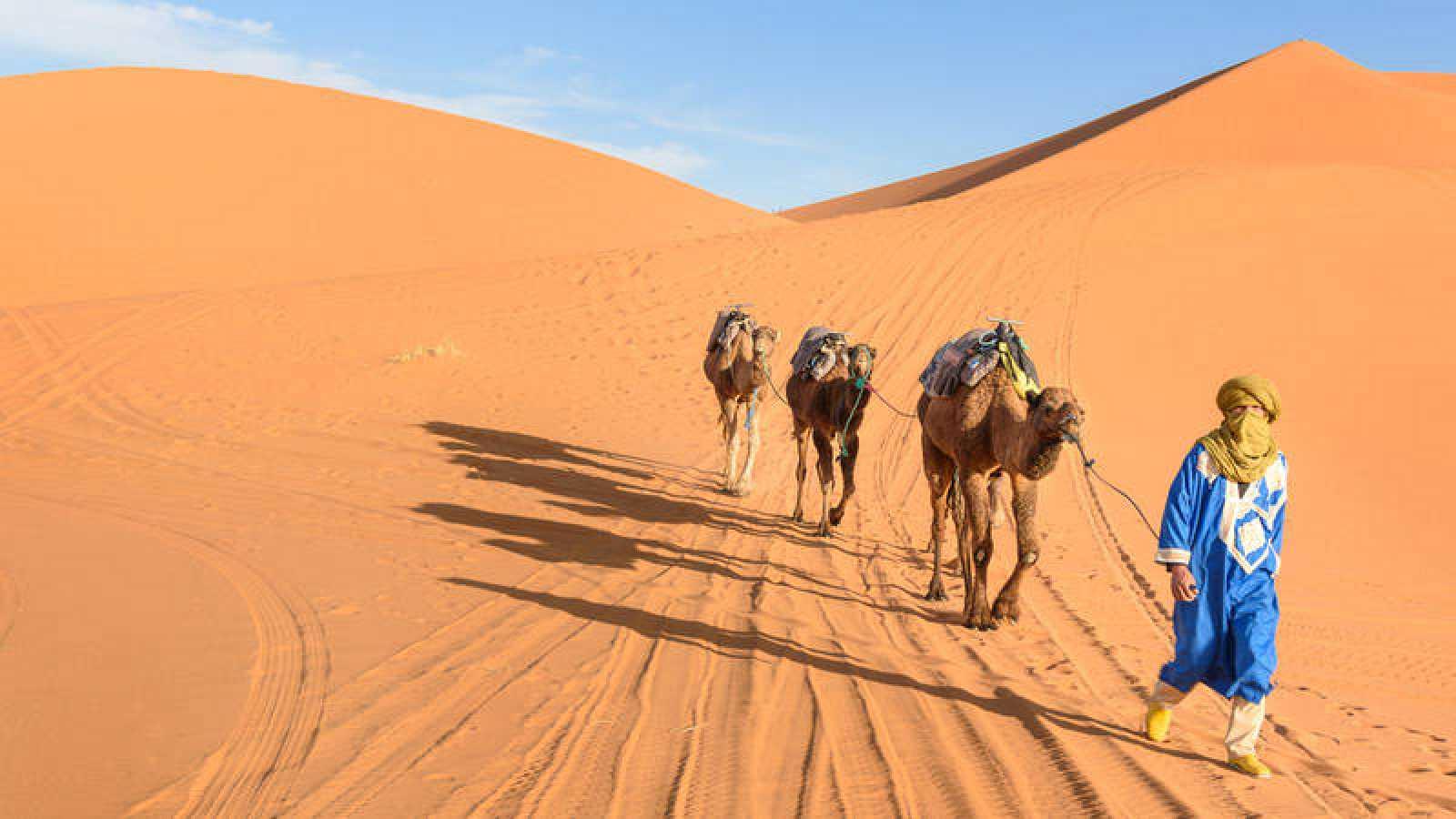 Desierto Del Sahara Mapa.Los Pastores Podrian Haber Participado Activamente En La