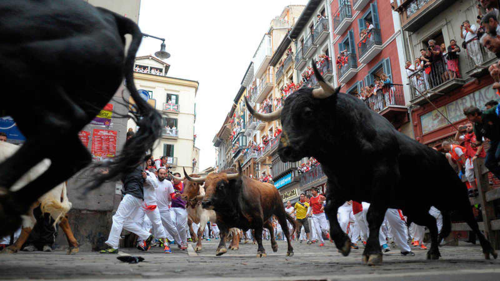 Los toros de Victoriano del Río, en su encierro de San Fermín 2016