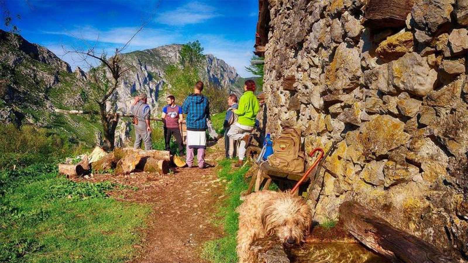 Han surgido escuelas de pastores en País Vasco, Extremadura, Asturias, Cataluña, Murcia y Andalucía.