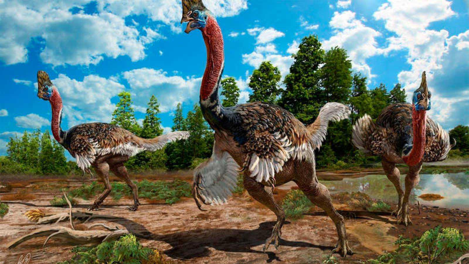 Ilustración del aspecto que tendría el 'Corythoraptor jacobsi', dinosaurio descubierto en China