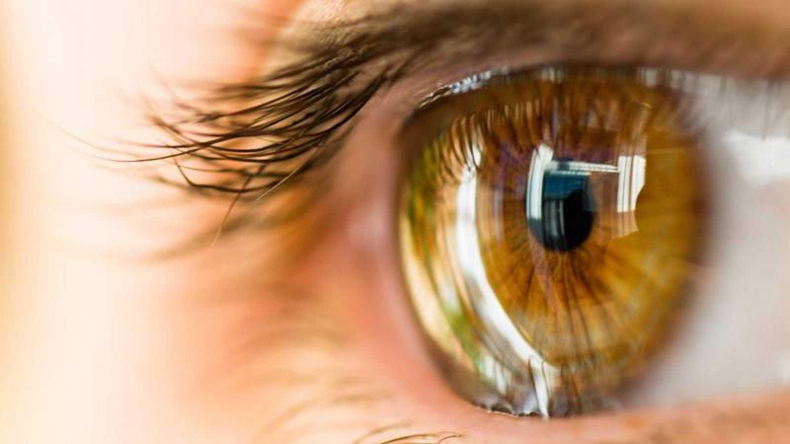 En el mundo hay anualmente más de 10 millones de personas que sufren ceguera por patología corneal.