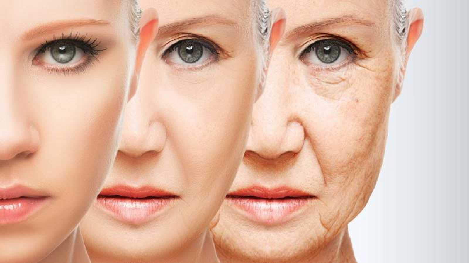 """Los trabajos relacionados con dietas """"cetogénicas"""" abren un nuevo campo en la investigación del envejecimiento."""