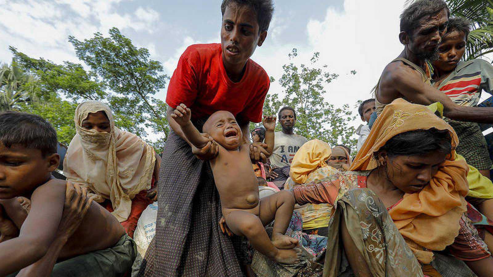 Refugiados rohinyás de Birmania llegan a un campo de acogida en Bangladés