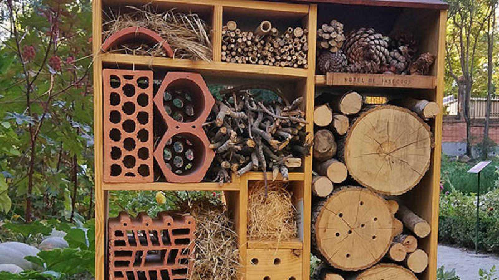 El Jardín Botánico de Madrid construye un hotel para que los insectos mejoren su polinización