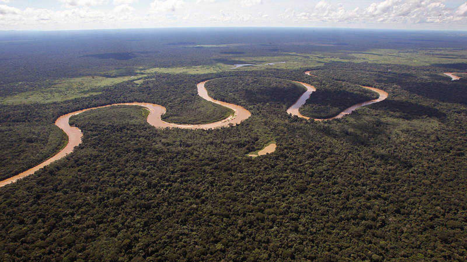 El informe de científicos internacionales se centra en el Territorio Indígena y Parque Nacional Isiboro-Secure (Tipnis).