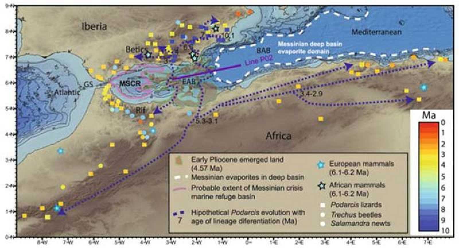 Un archipiélago en el Mar de Alborán sirvió de puente entre África y Europa