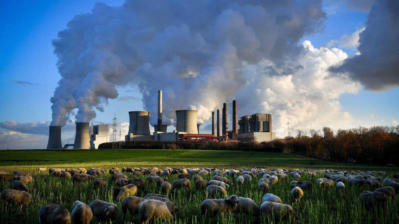 Varias columnas de humo se desprenden de la planta de Neurath en Bergheim (Alemania)