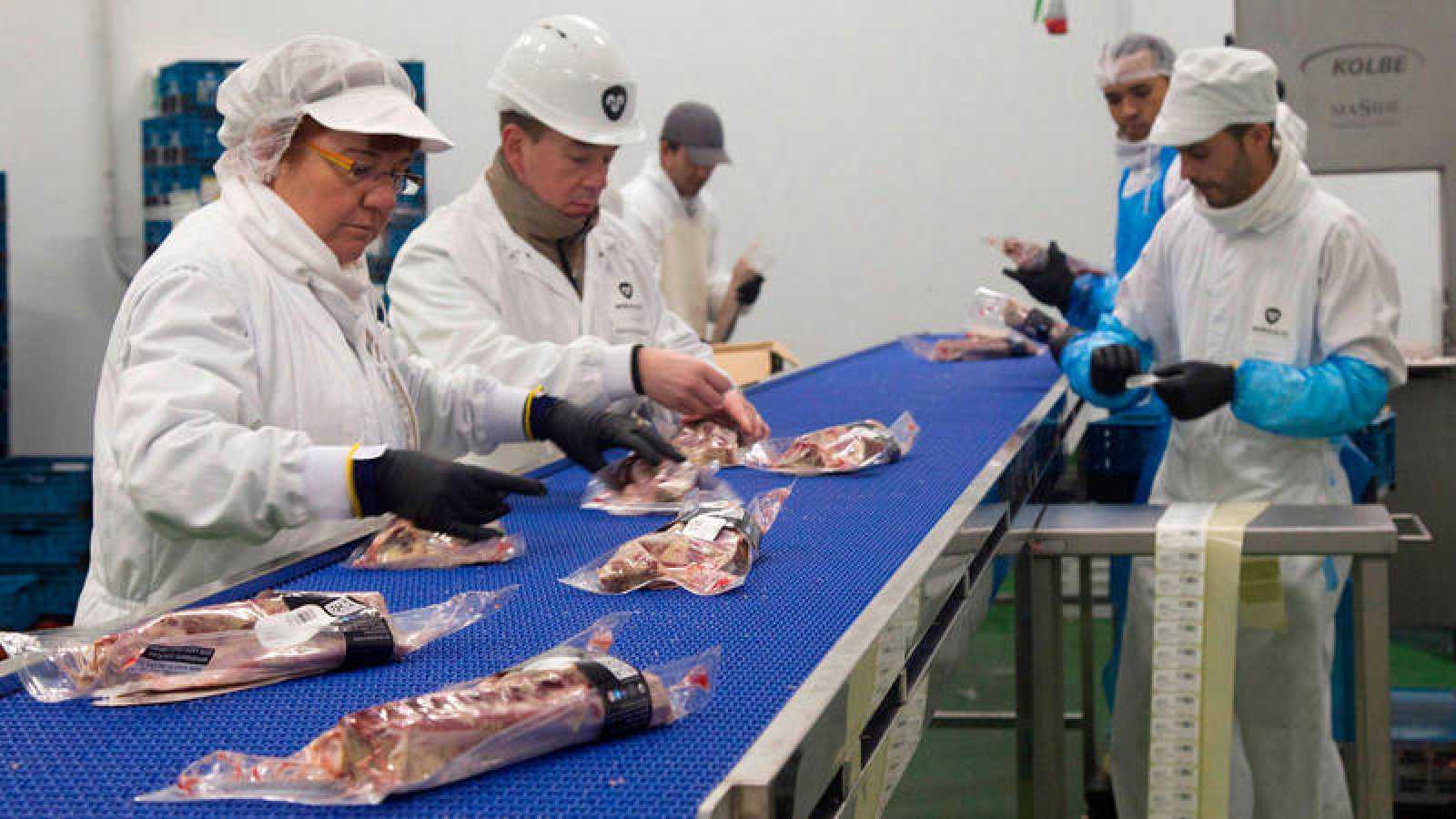 Varios trabajadores de la industria cárnica en una imagen de archivo