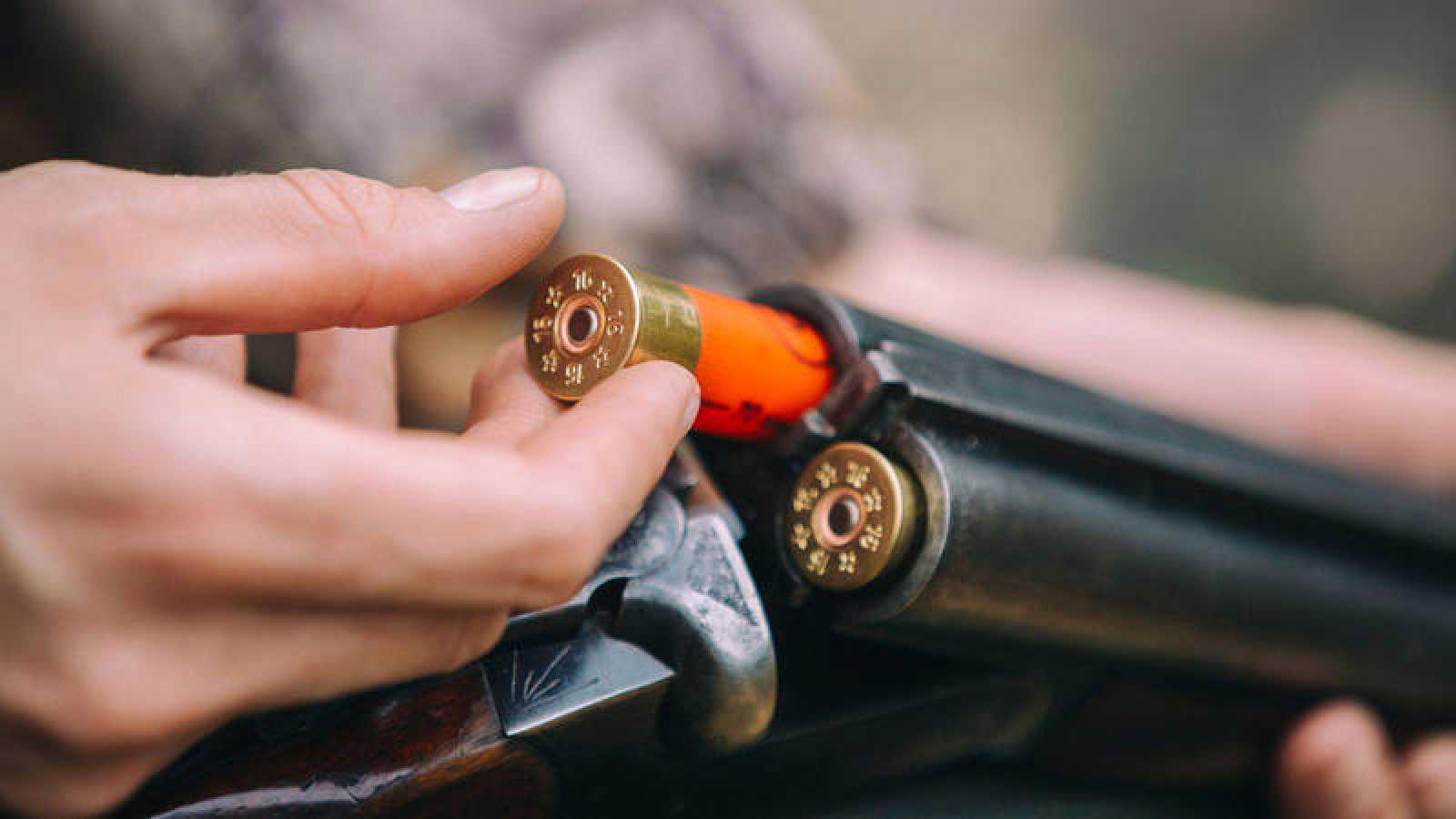 Las armas en España: pocas y muy controladas