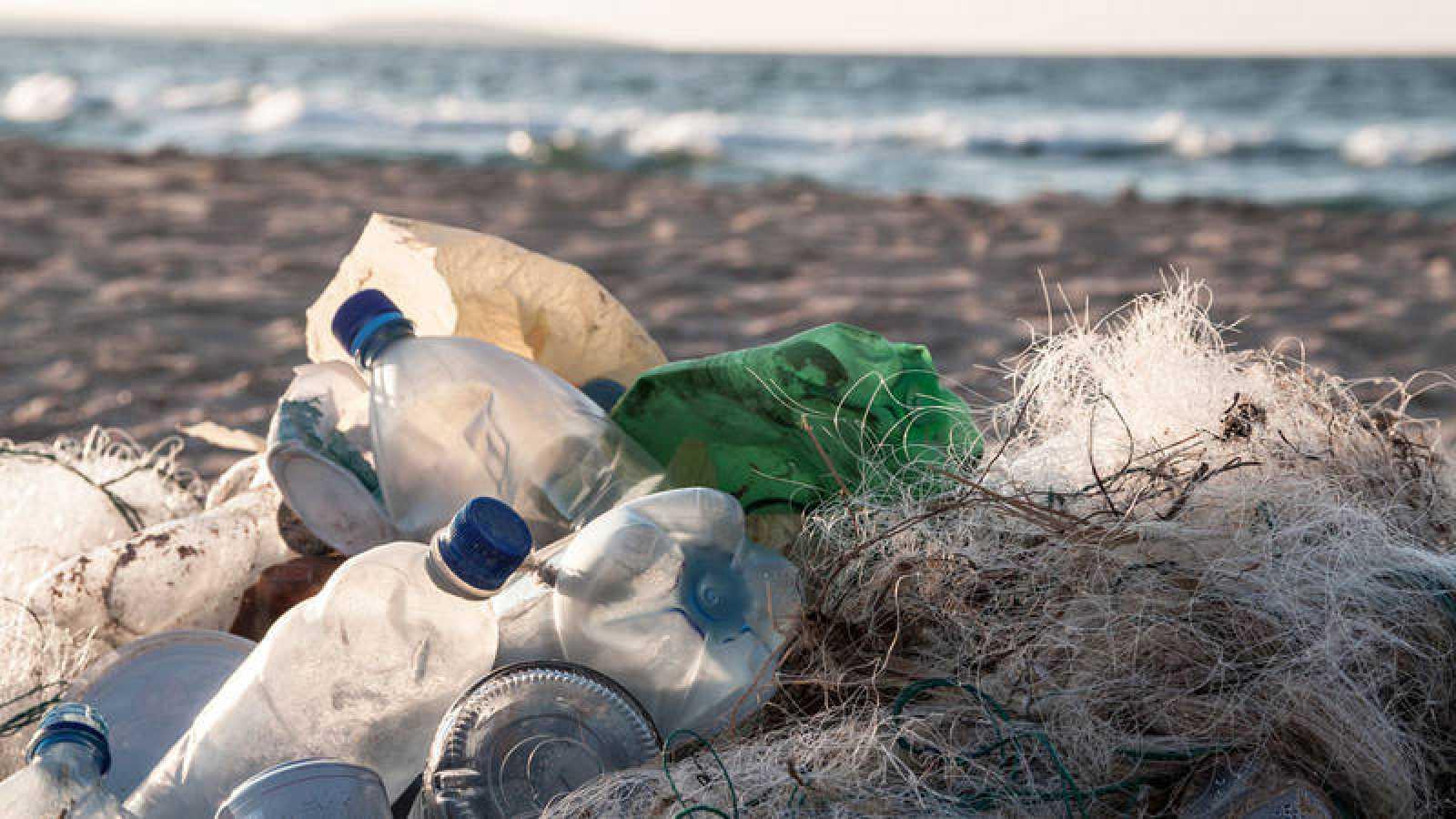 Los enredos de plástico relacionados con la pesca, como las redes, han contribuido de forma significativa al incremento observado.