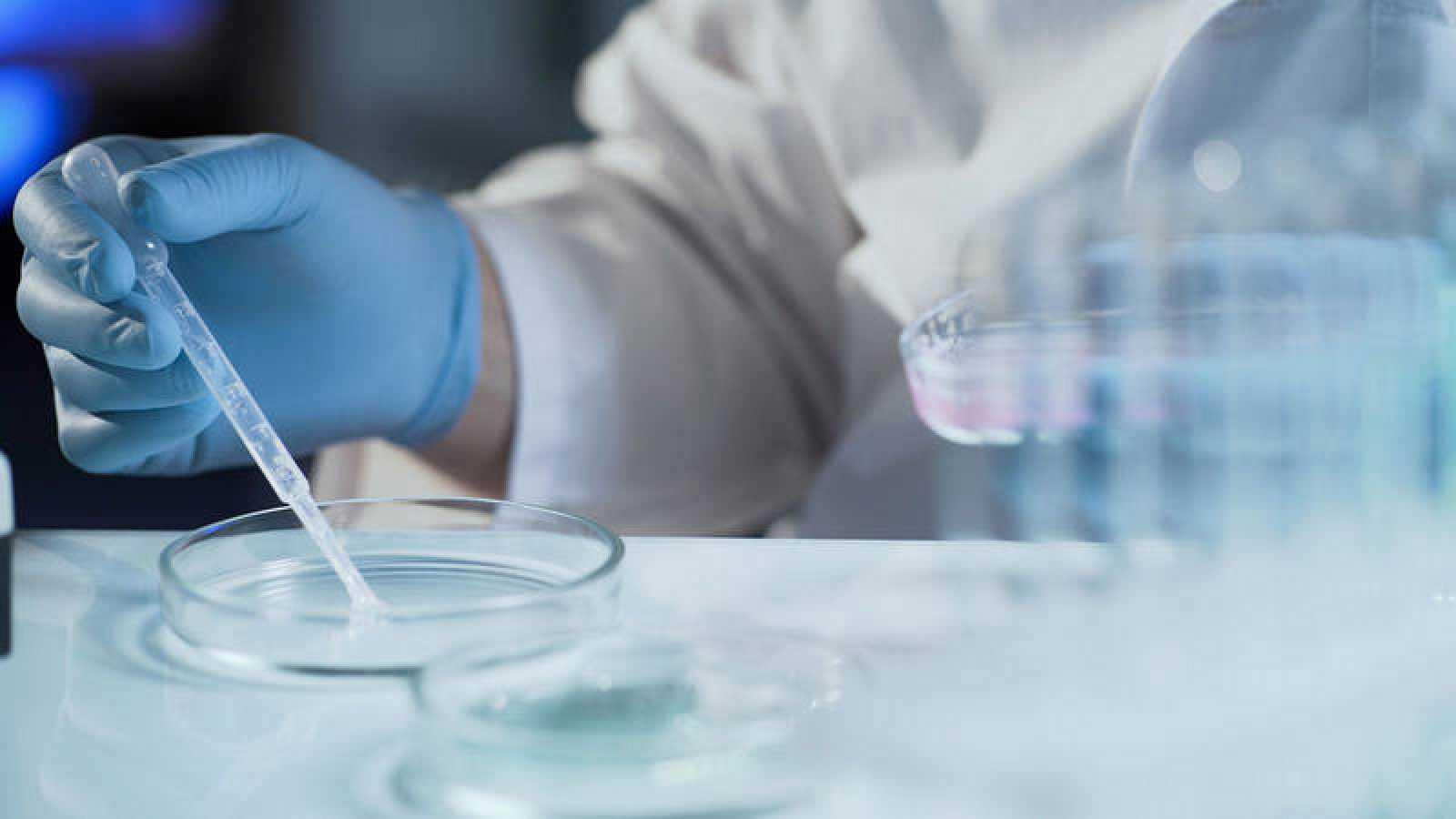 La edición genética podría ser un enfoque nuevo y prometedor para tratar las enfermedades pulmonares antes del nacimiento.