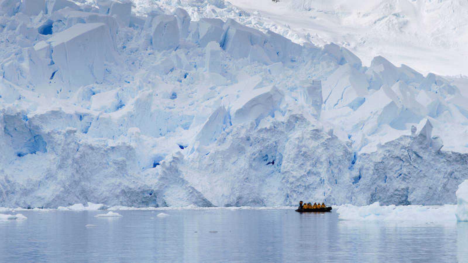 Las muestras fueron recogidas entre 2009 y 2013 dentro del proyecto de exploración de los océanos Tara.