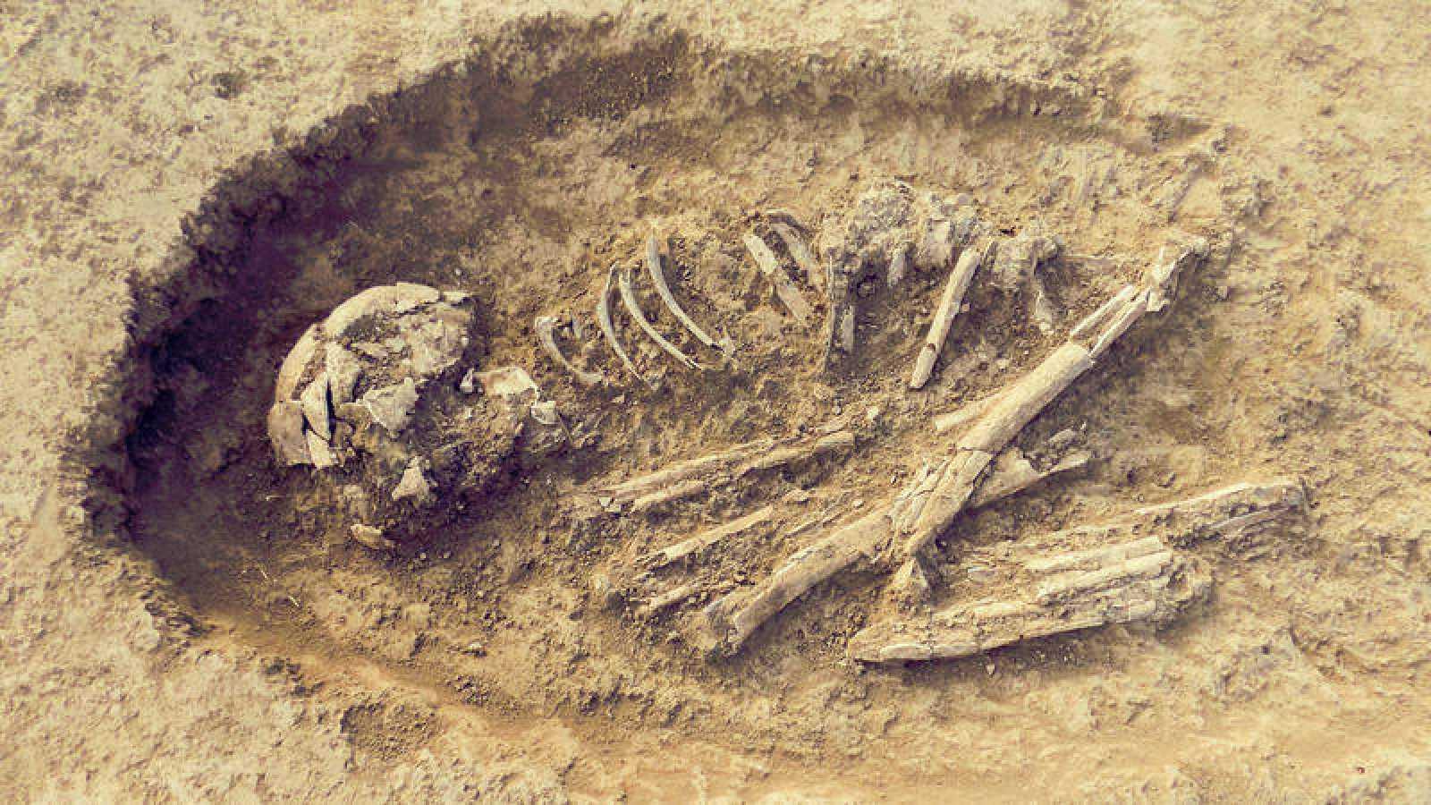 Normalmente, cuando se recuperan fósiles humanos aislados en los yacimientos es muy difícil asignarles el sexo.