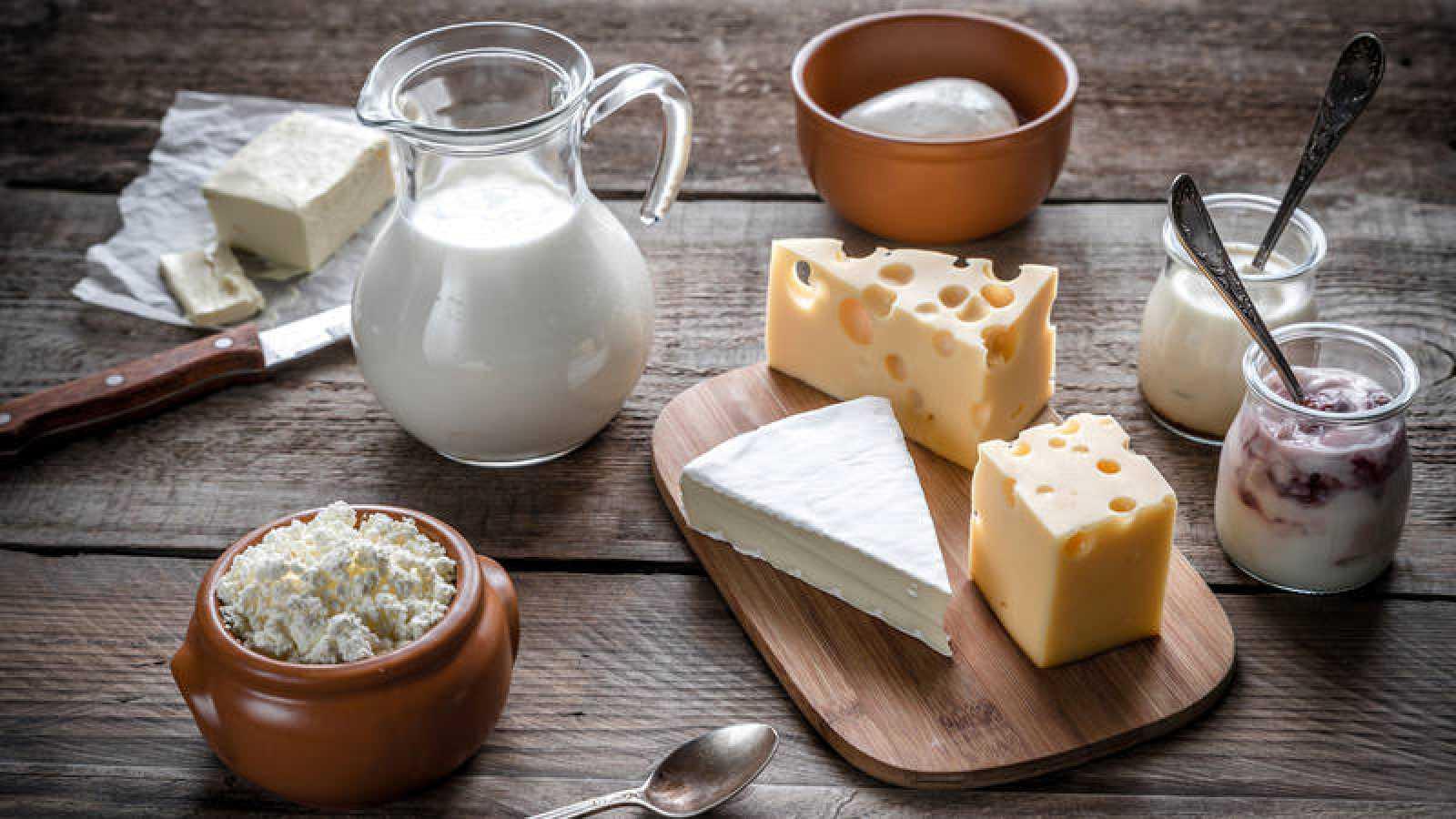Resultado de imagen para consumo de lacteos