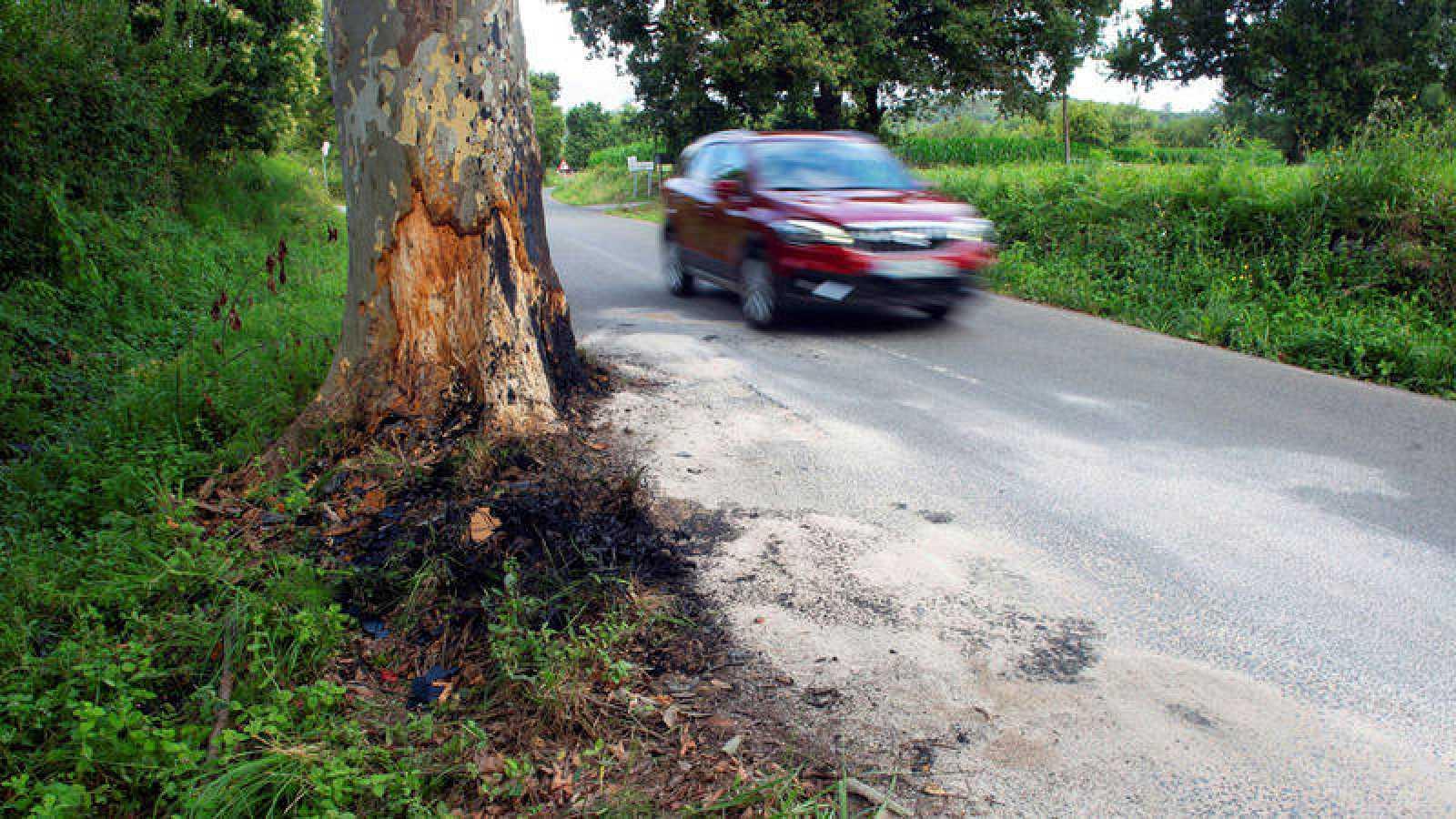 Vista del lugar del accidente de tráfico en el que ayer lunes murió el asesino de la mujer de 52 años en Escalante.