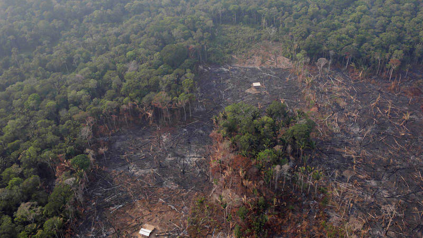 Zona de selva eforestada cerca de Humaita, en el estado de Amazonas. REUTERS/Ueslei Marcelino