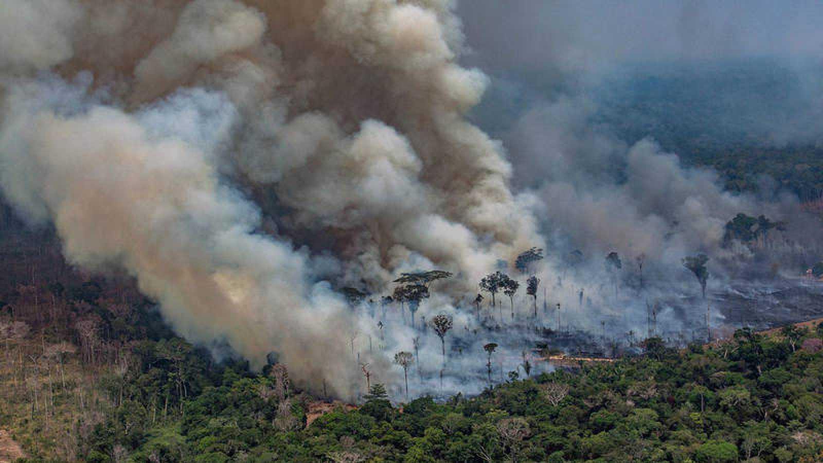 Imagen difundida por Greenpeace de incendios en el estado de Rondonia, en Brasil. Victor MORIYAMA / GREENPEACE / AFP