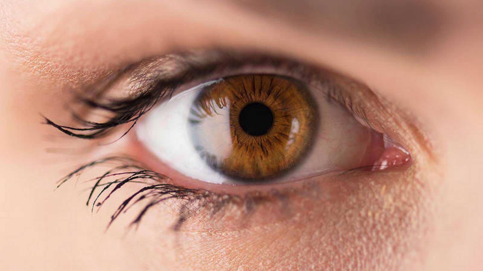La retina es una importante fuente de biomarcadores.