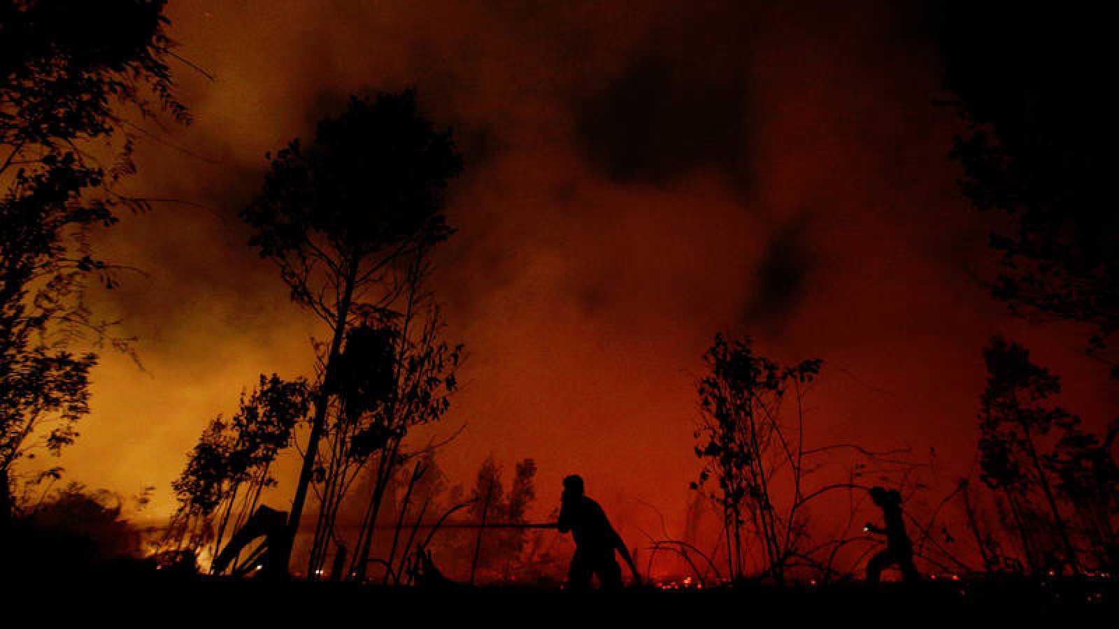 Bomberos luchan contra el fuego en el Parque Nacional Sebangau, en la provincia indonesia de Kalimantan Central.