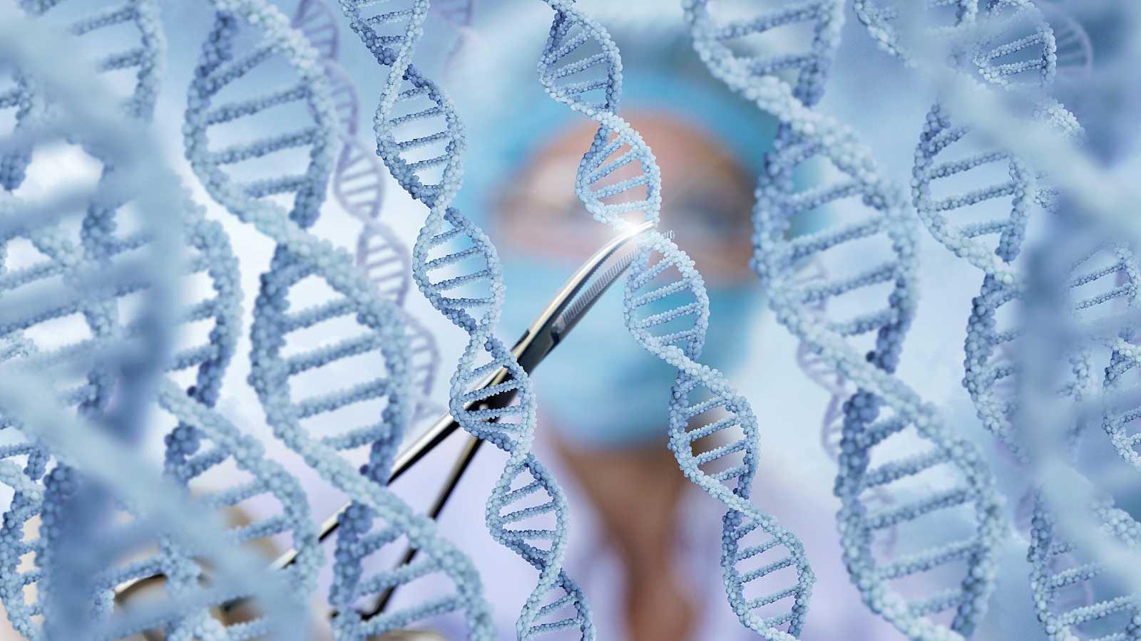 En la actualidad, la mayoría de las75.000 variantes humanas del ADN que se conocenno se pueden corregir de manera eficiente.