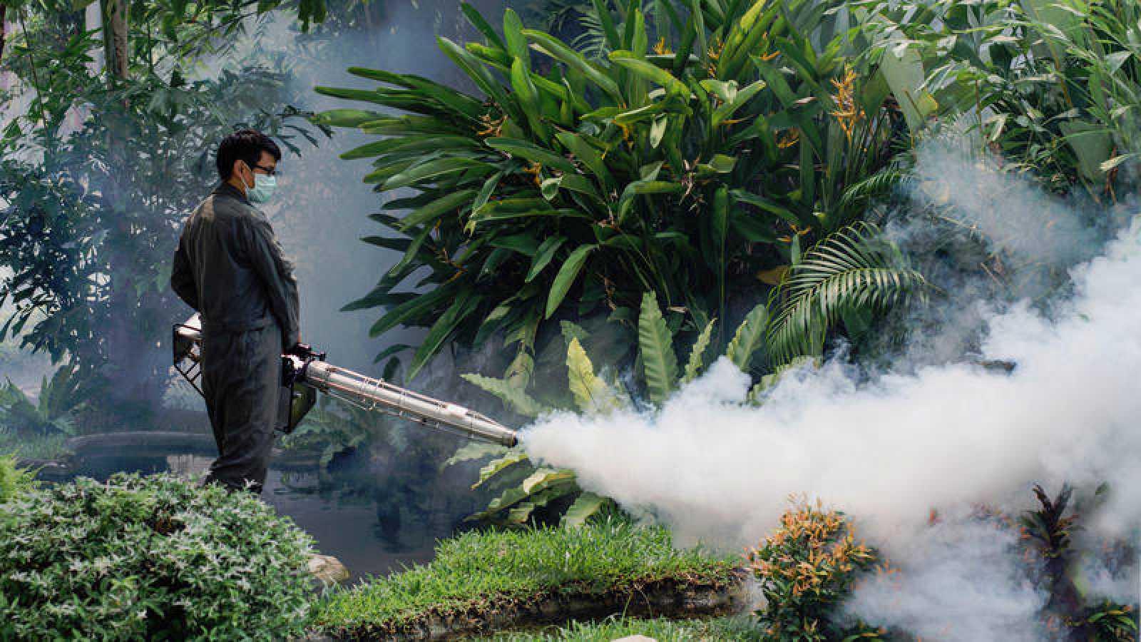 La fumigación es una de las medidas empleadas para combatir almosquito de la especie Aedes, transmisor del dengue, entre otras enfermedades.