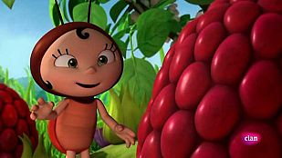VideoForbidden fruit