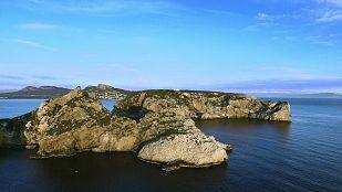 Video¡Qué animal! recorre esta semana las Islas Medas, uno de los refugios de fauna más importantes de todo el Mediterráneo