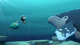 VideoLoneliest whale