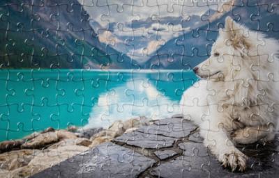 ¿Puedes hacer este puzzle en menos de 3 minutos?