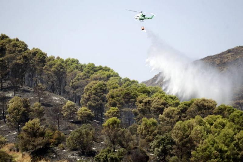 El fuego quema más de 400 hectáreas