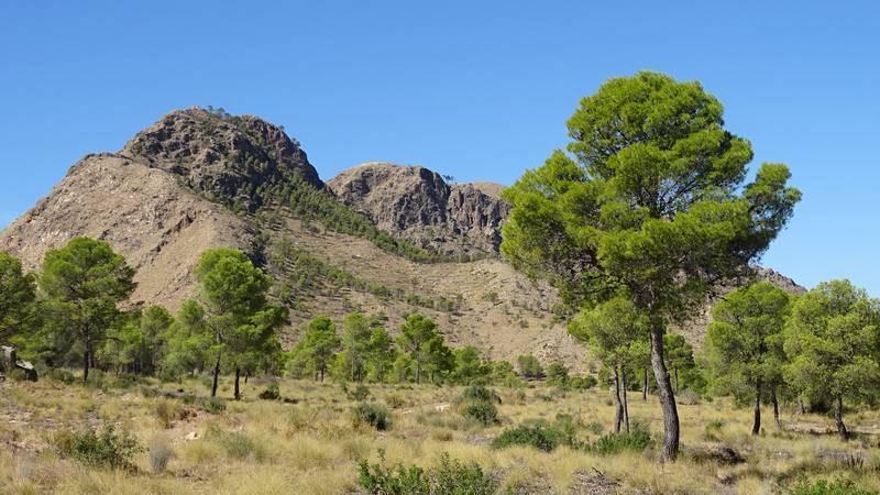 Sierra de los Donceles